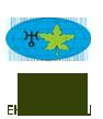 Studium Edukacji Ekologicznej
